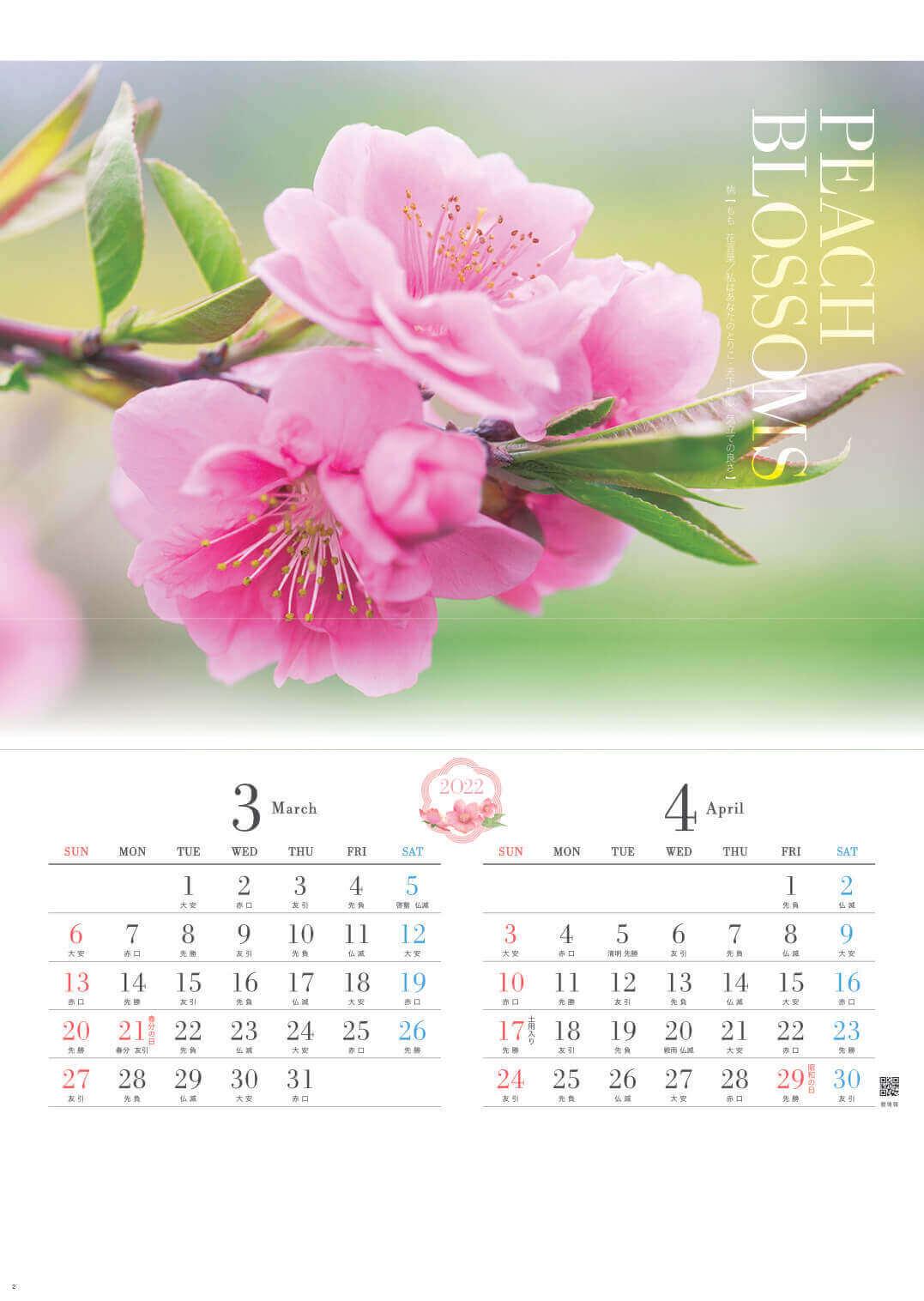 3-4月 桃 四季の花 2022年カレンダーの画像