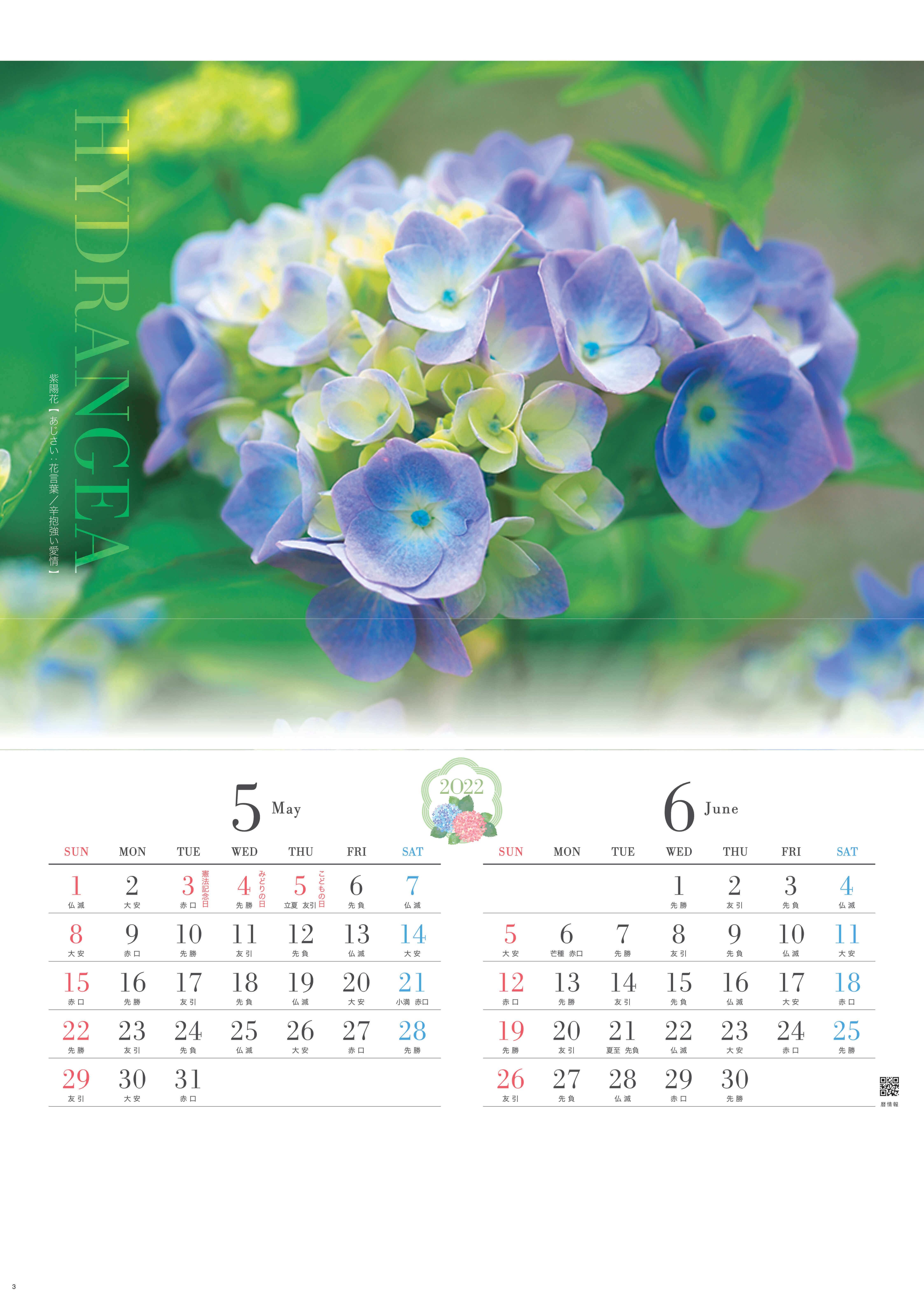 5-6月 紫陽花 四季の花 2022年カレンダーの画像