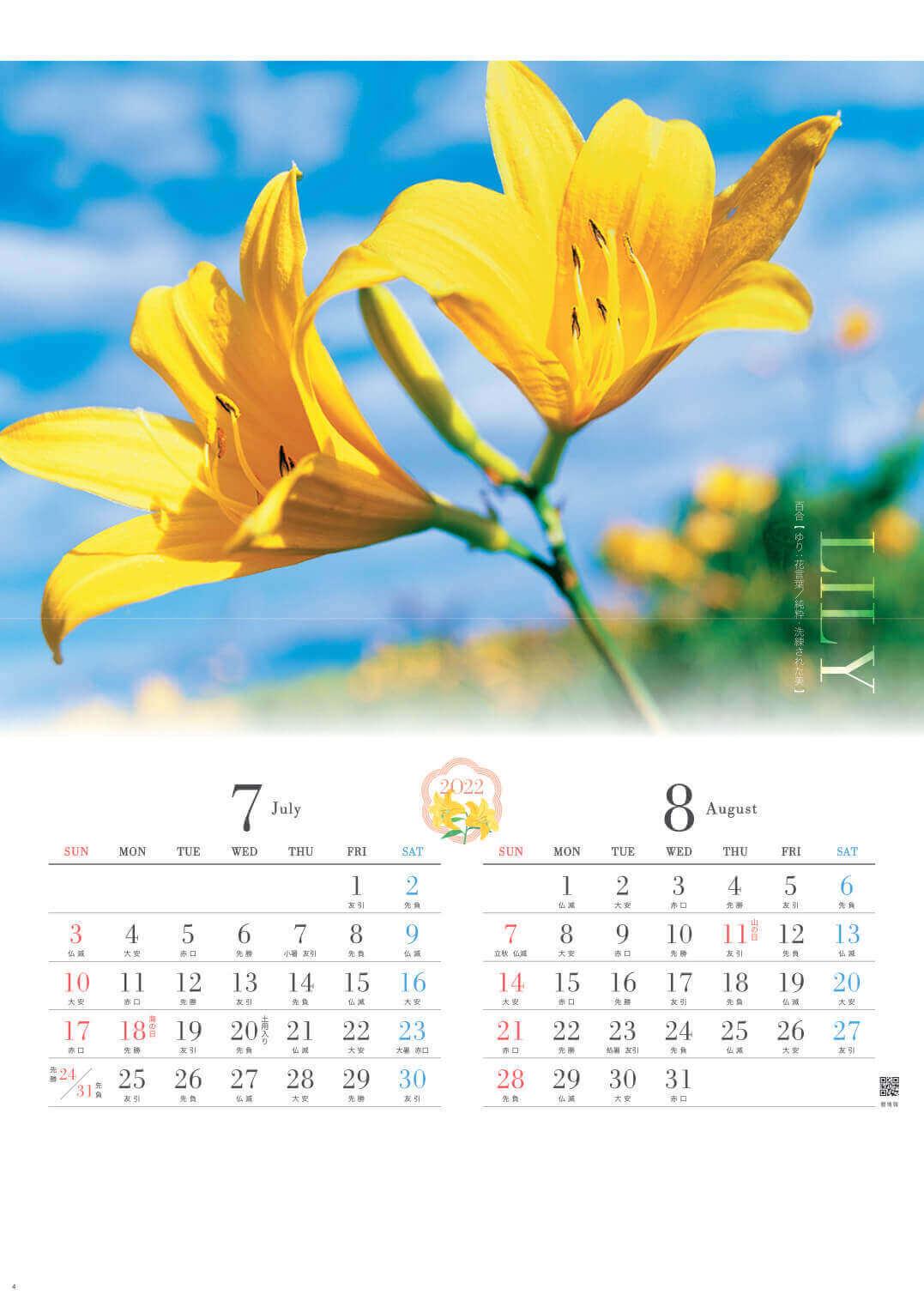 7-8月 百合 四季の花 2022年カレンダーの画像