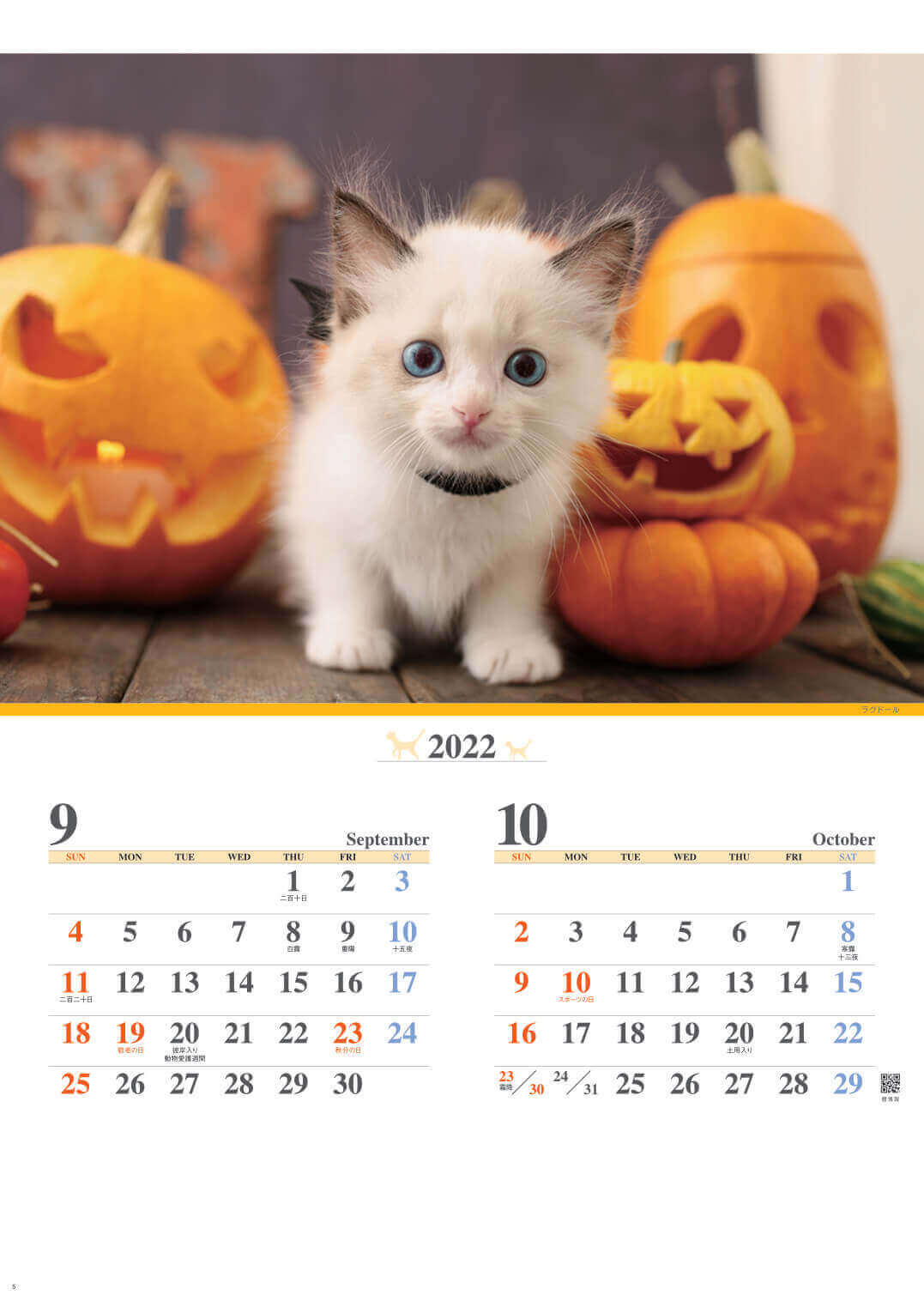 9-10月 ラグドール キャッツファミリー 2022年カレンダーの画像