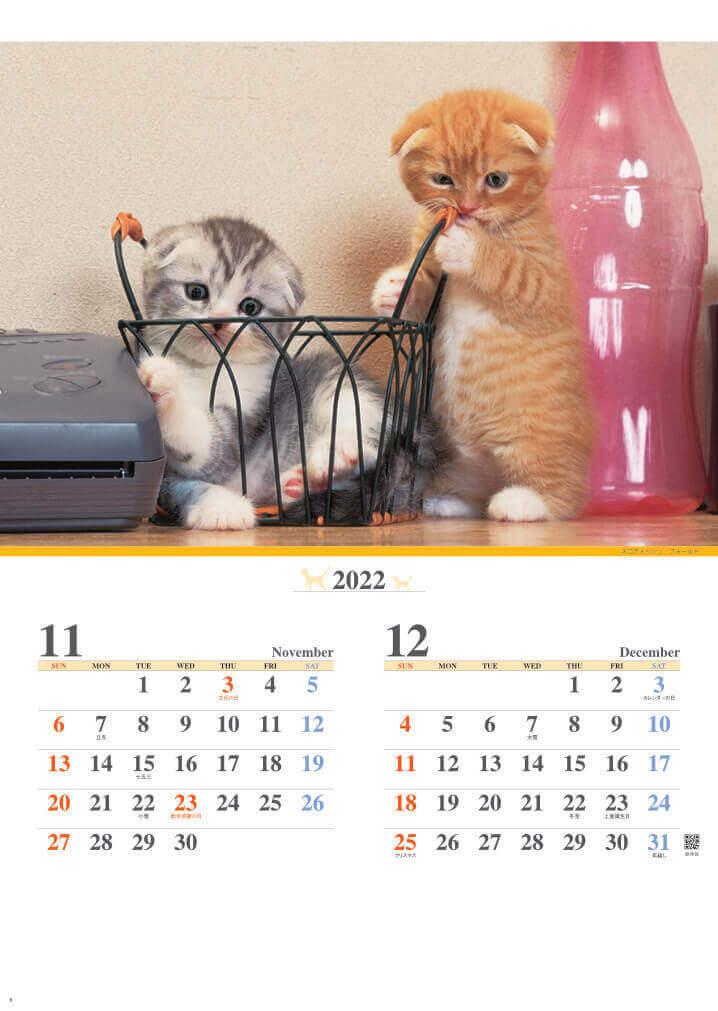11-12月 スコティッシュ・フォールド キャッツファミリー 2022年カレンダーの画像