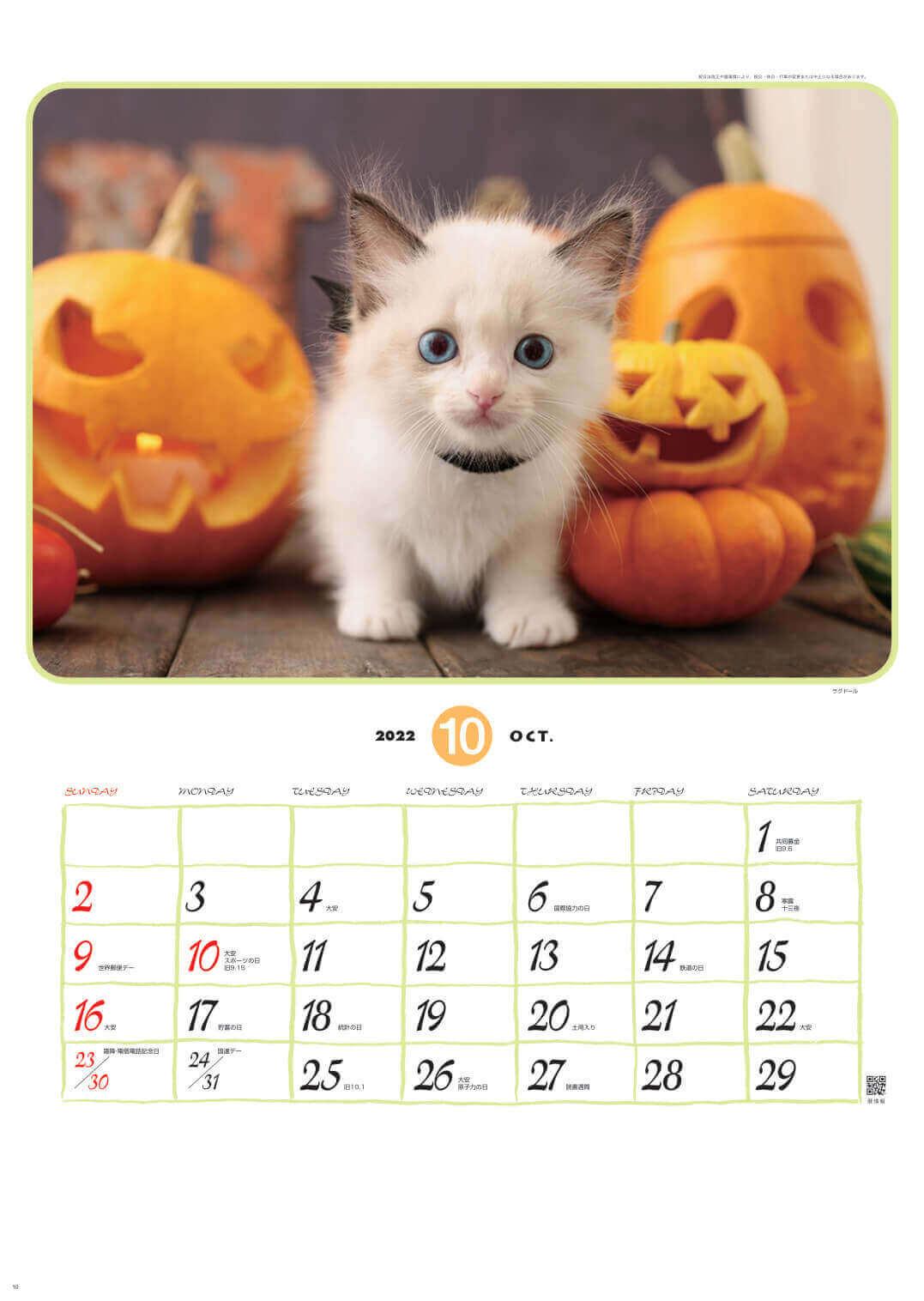 ラグドール リトルフレンド 2022年カレンダーの画像