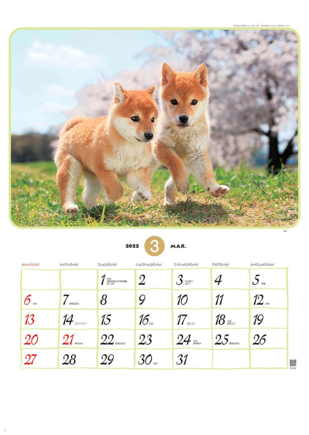 柴犬 リトルフレンド 2022年カレンダーの画像