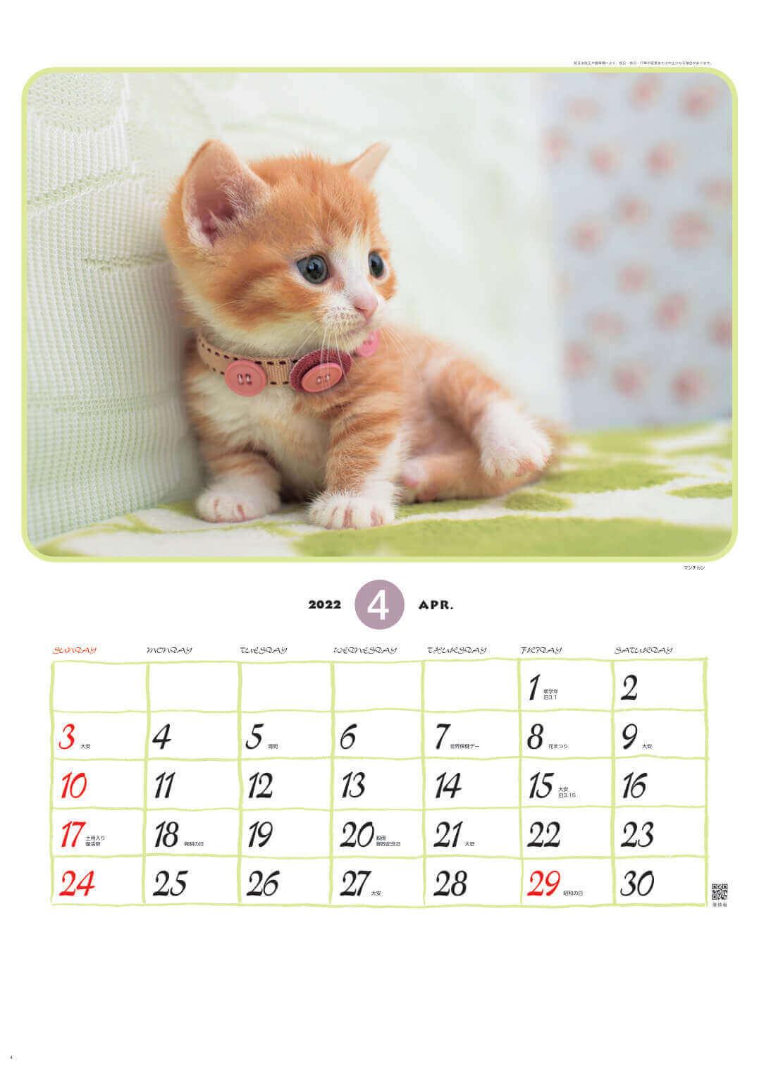 マンチカン リトルフレンド 2022年カレンダーの画像