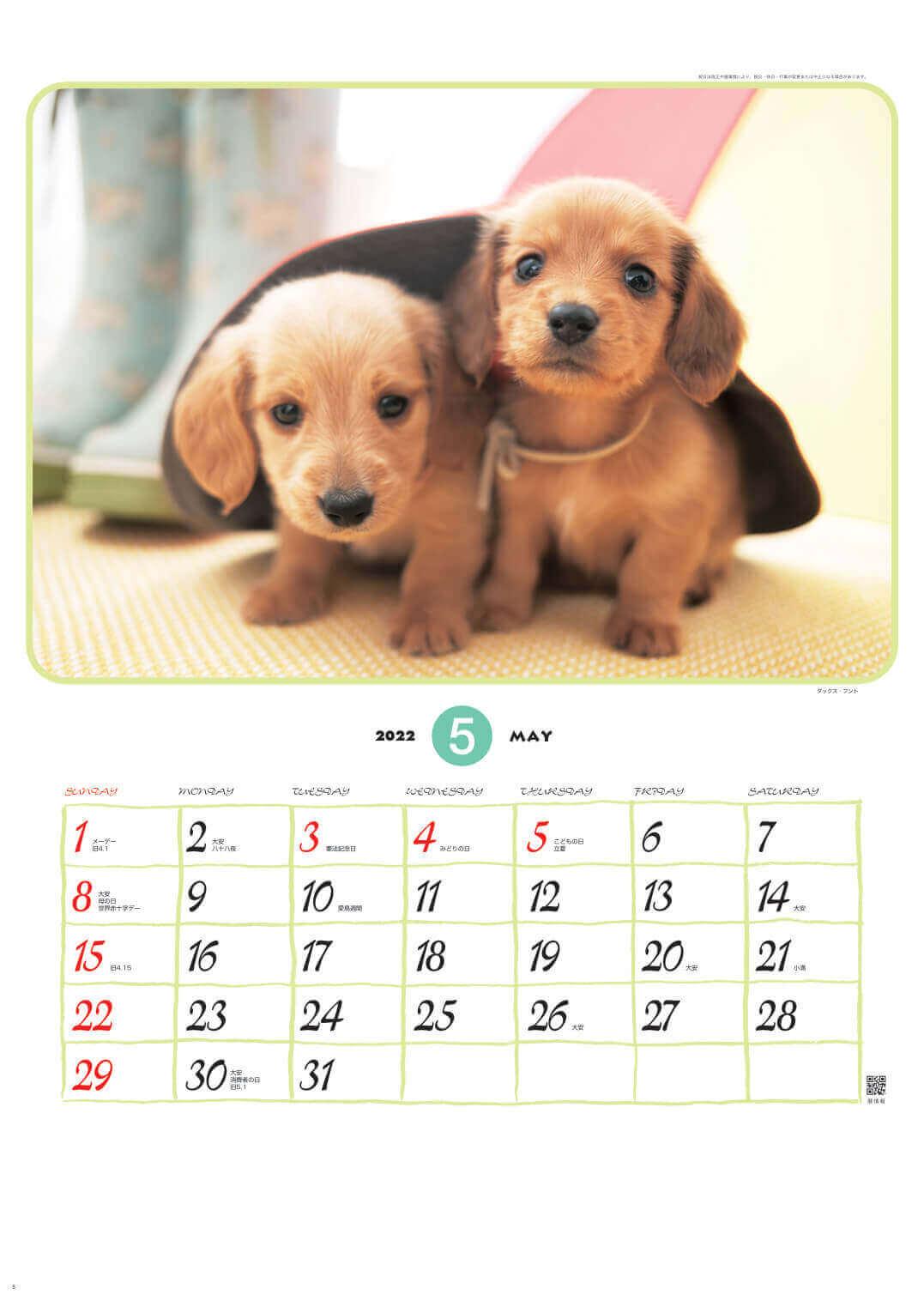 ダックス・フント リトルフレンド 2022年カレンダーの画像