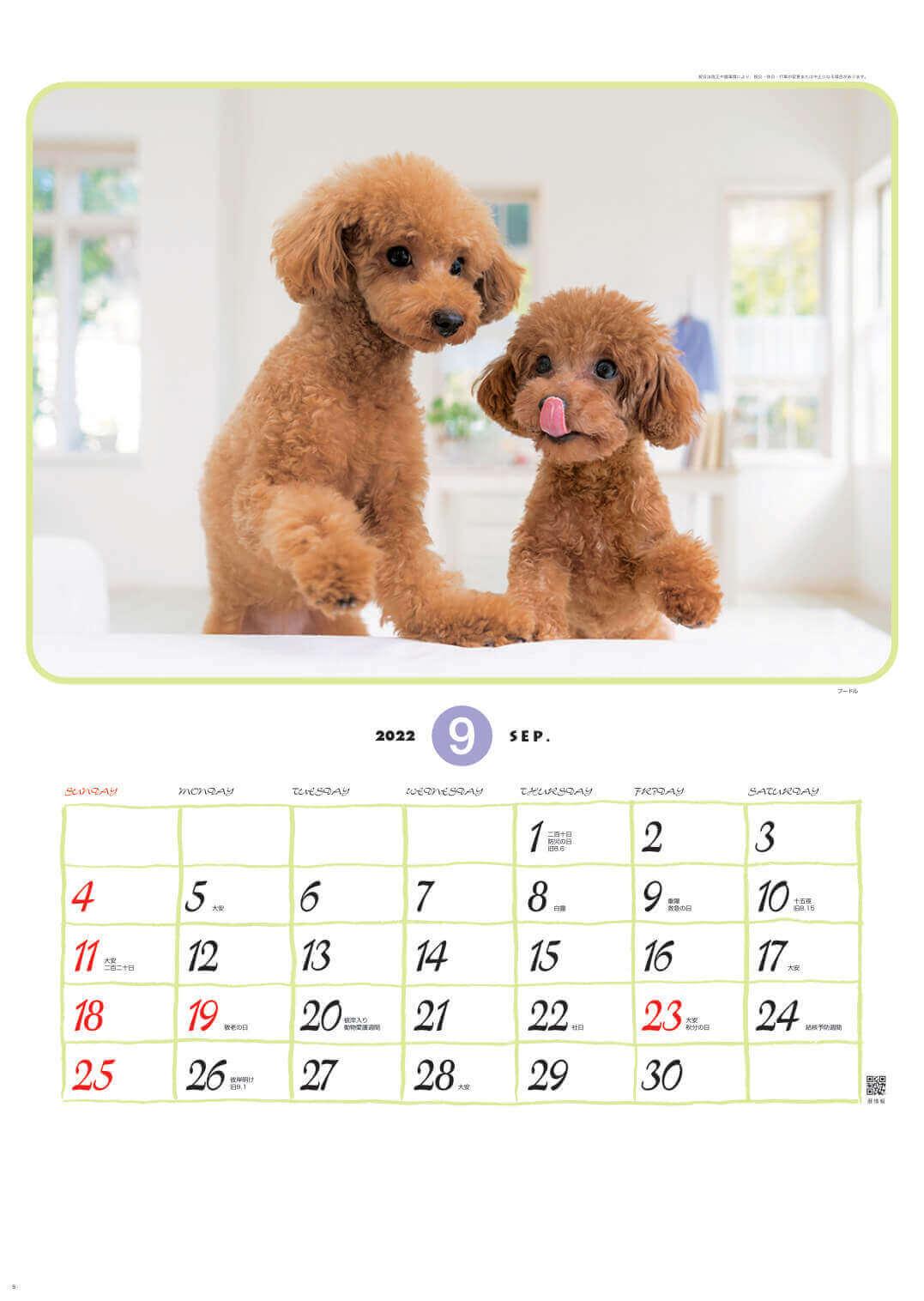 プードル リトルフレンド 2022年カレンダーの画像