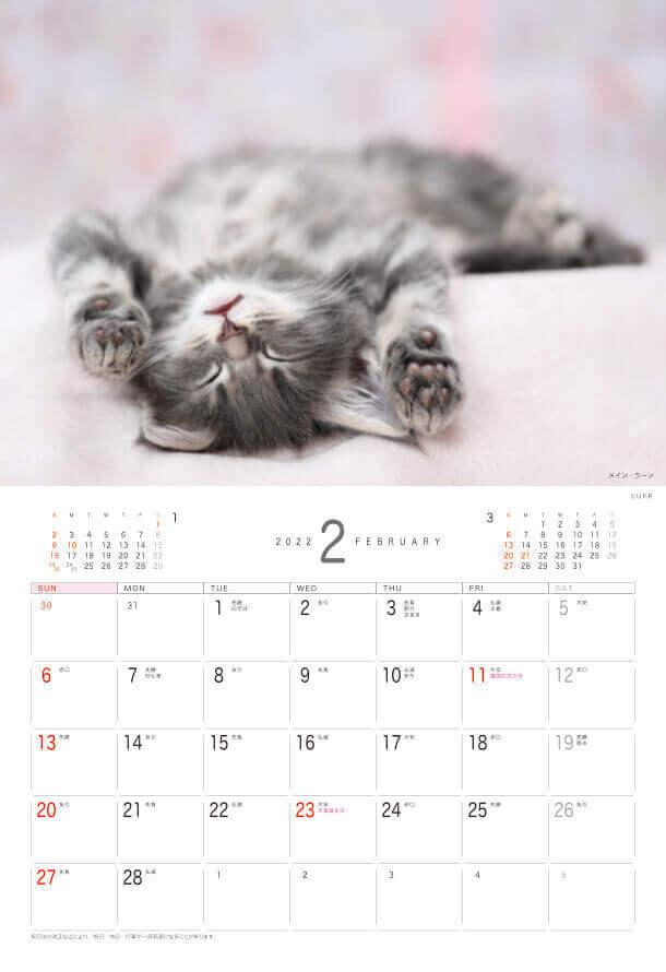 メイン・クーン Dog&Cat 2022年カレンダーの画像