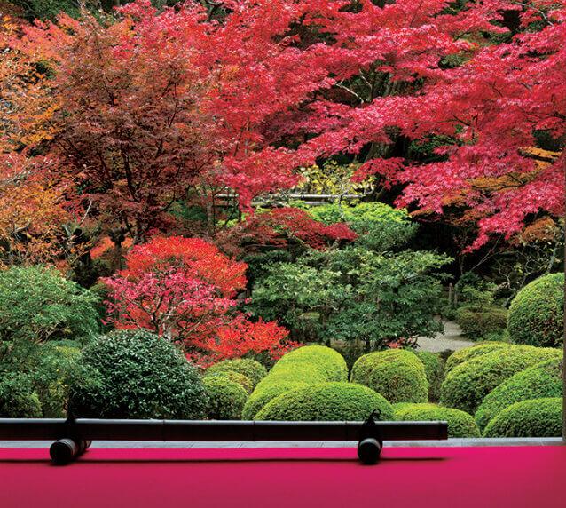 10月 金剛輪寺(滋賀) 日本の美 2022年カレンダーの画像
