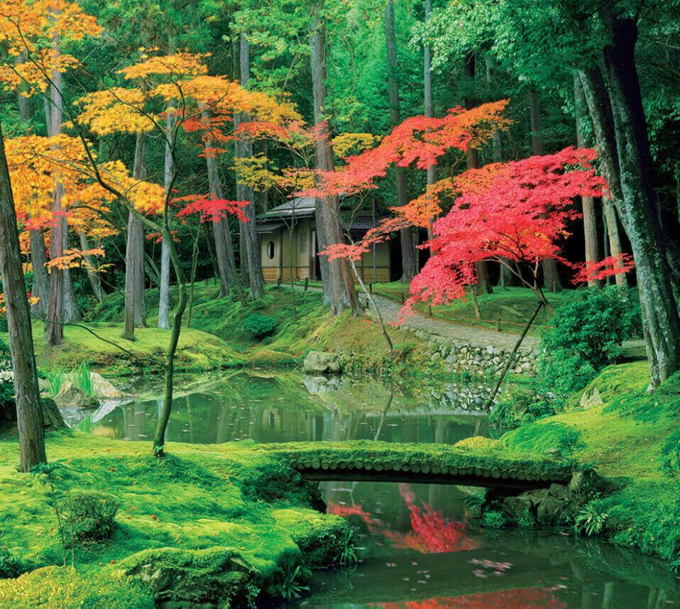 11月 西芳寺(京都) 日本の美 2022年カレンダーの画像