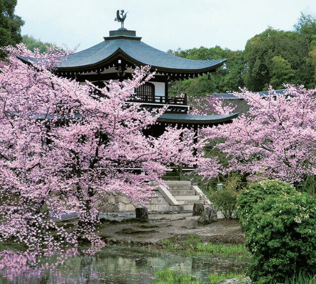 3月 勸修寺(京都) 日本の美 2022年カレンダーの画像