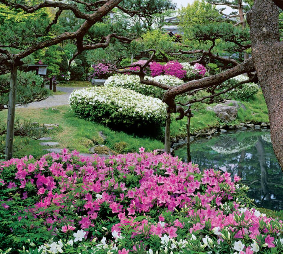 4月 酒井氏庭園(山形) 日本の美 2022年カレンダーの画像