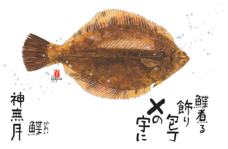 10月 カレイ 魚彩時記 -岡本肇- 2022年カレンダーの画像