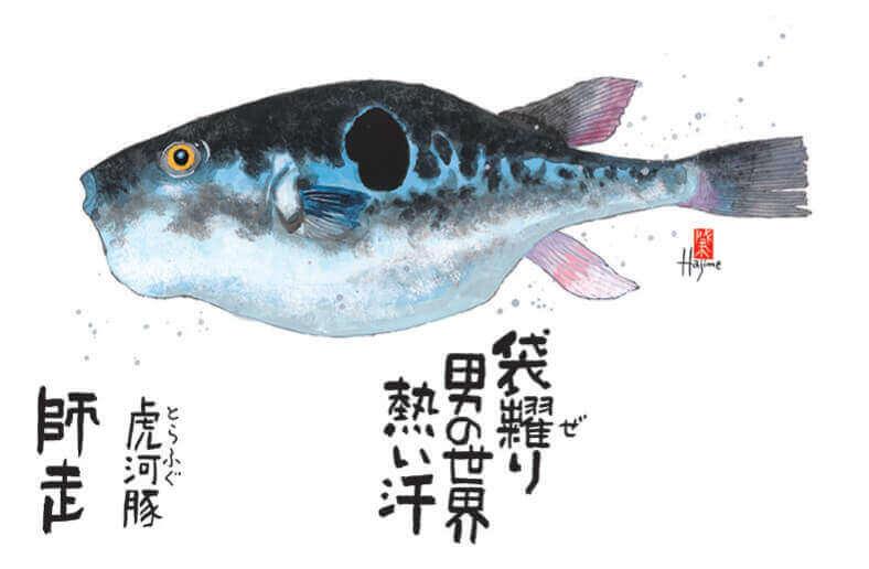 12月 トラフグ 魚彩時記 -岡本肇- 2022年カレンダーの画像