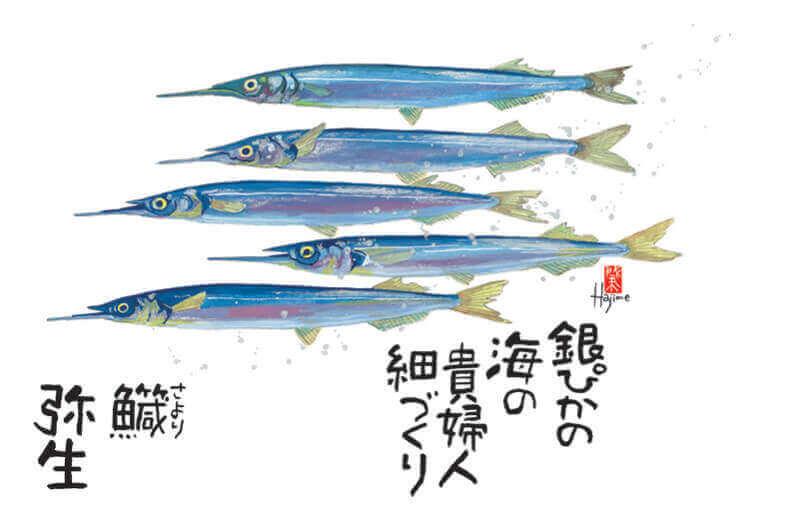 3月 サヨリ 魚彩時記 -岡本肇- 2022年カレンダーの画像