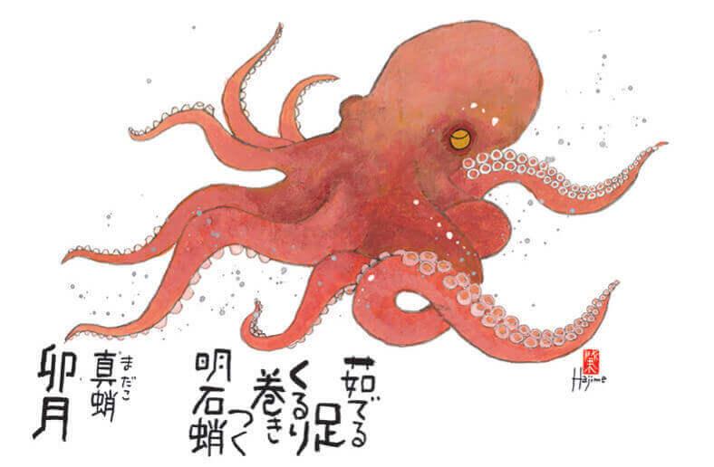 4月  マダコ 魚彩時記 -岡本肇- 2022年カレンダーの画像