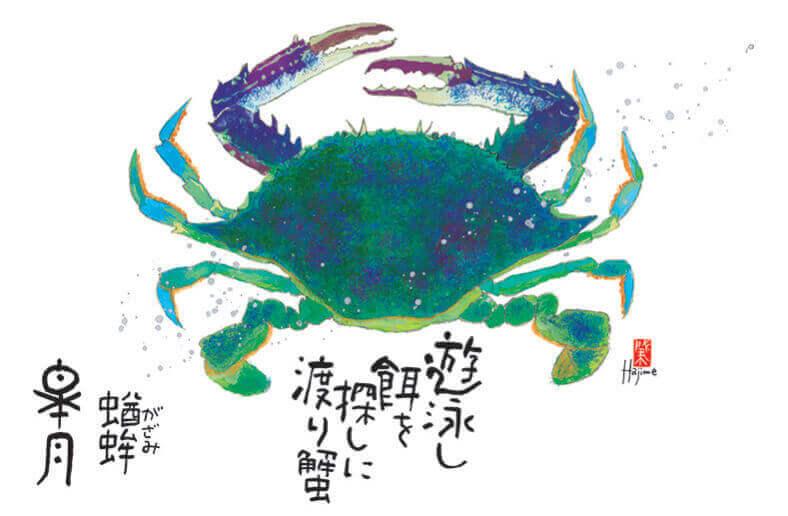 5月 ガザミ 魚彩時記 -岡本肇- 2022年カレンダーの画像