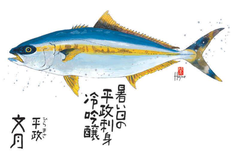 7月 ヒラマサ 魚彩時記 -岡本肇- 2022年カレンダーの画像