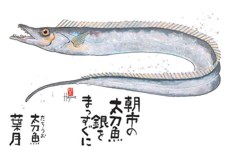 8月 タチウオ 魚彩時記 -岡本肇- 2022年カレンダーの画像