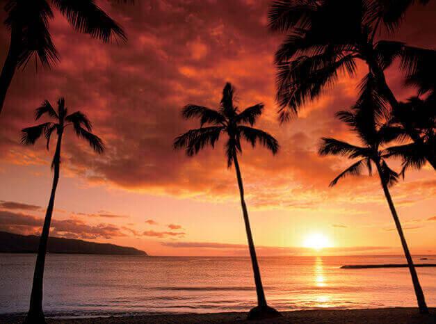 9-10月 HAWAII パラダイス 2022年カレンダーの画像
