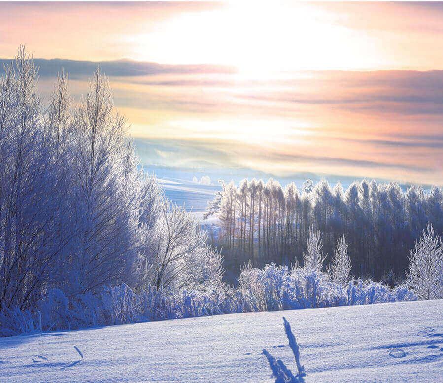 12月 美瑛町(北海道) 日本の朝 2022年カレンダーの画像