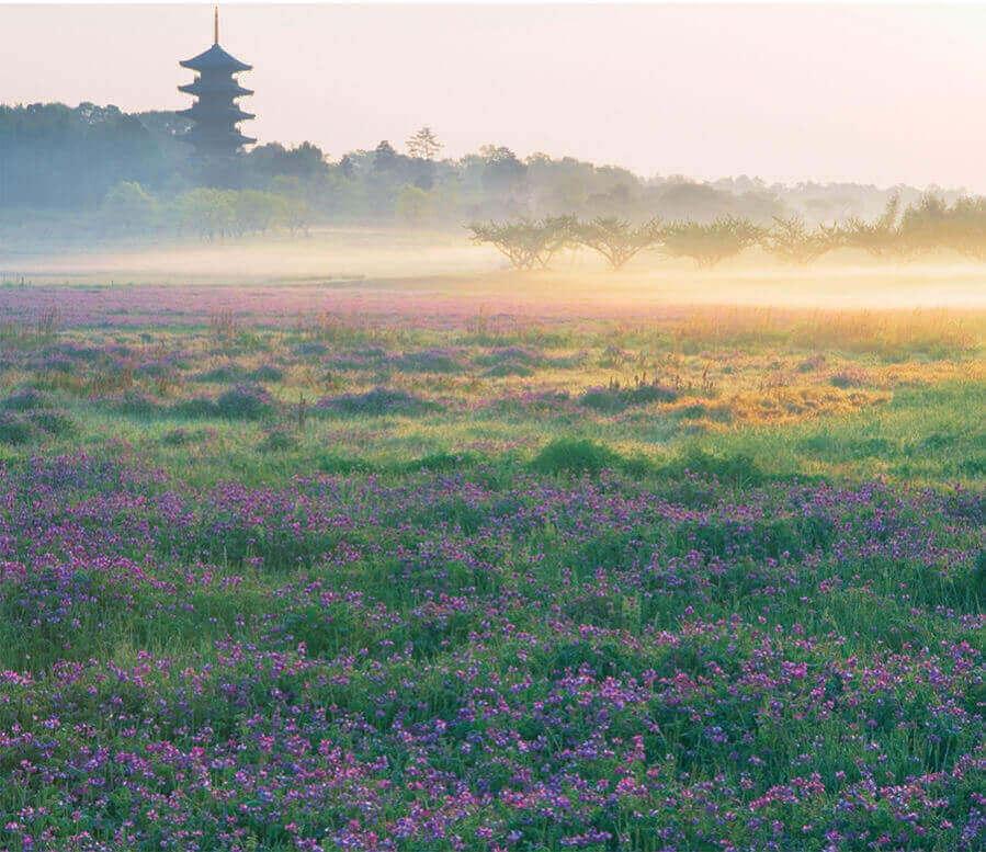 5月 備中国分寺(岡山) 日本の朝 2022年カレンダーの画像