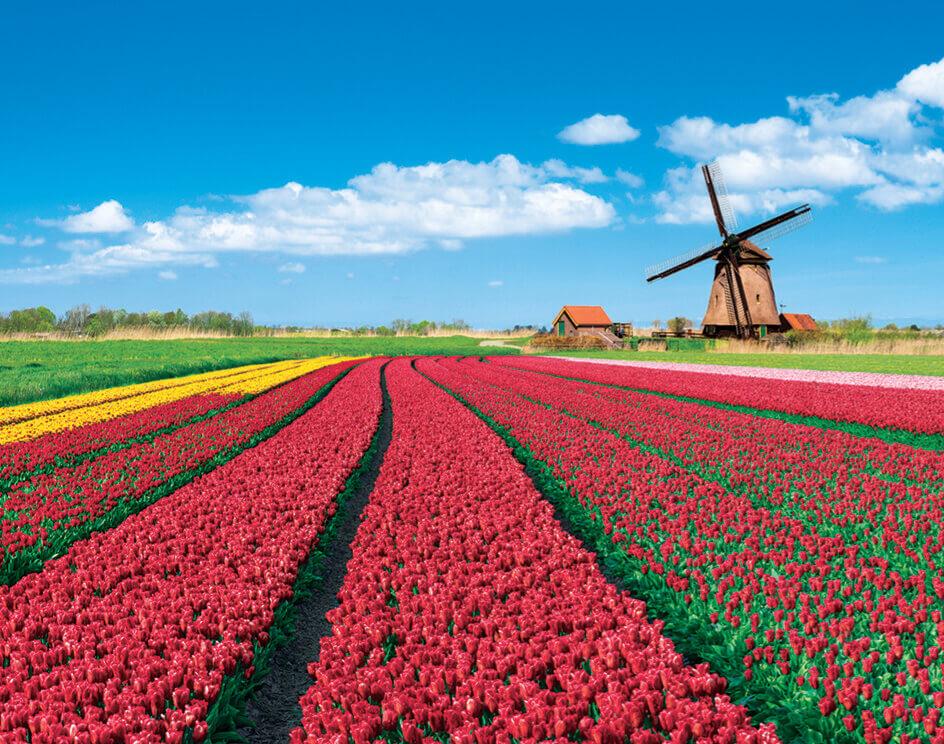 3-4月 オランダ ヨーロッパ 2022年カレンダーの画像