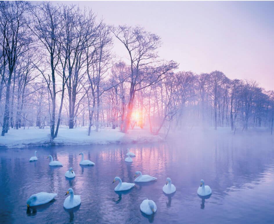 Pure~癒しの日本風景 2022年カレンダーの画像