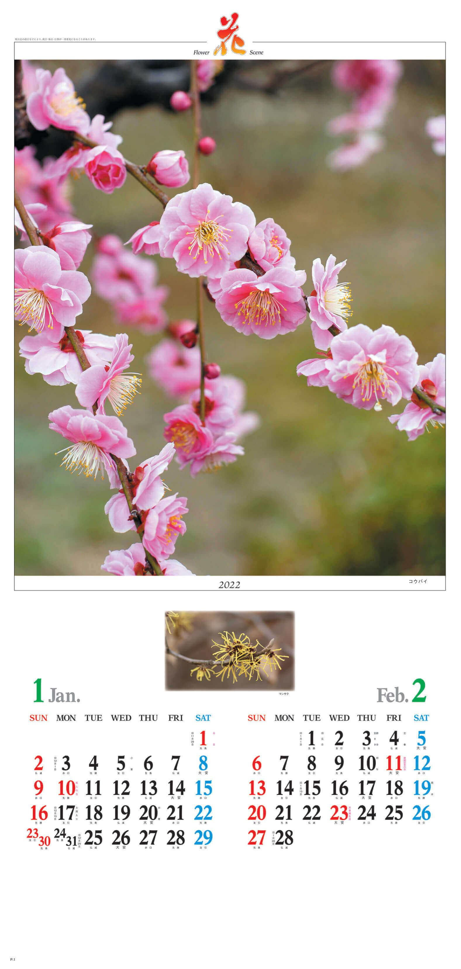 1-2月 コウバイ マンサク 花 (Flower Scene) 2022年カレンダーの画像