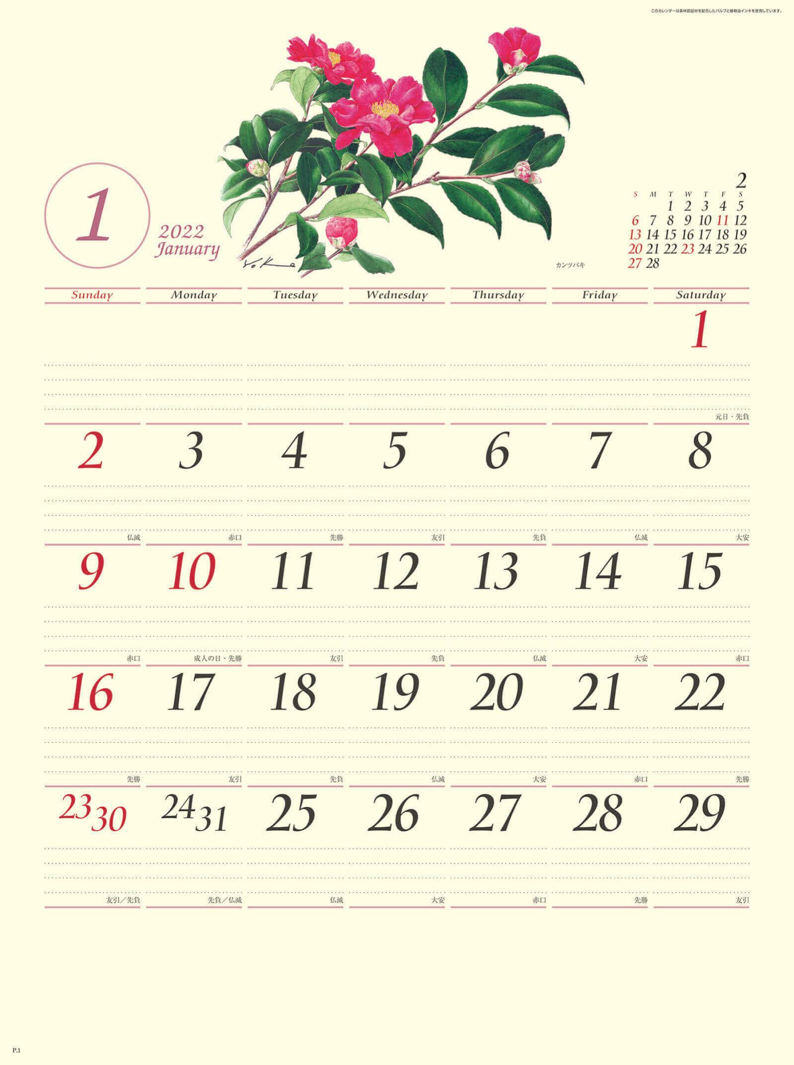 1月 カンツバキ ボタニカルアート 2022年カレンダーの画像