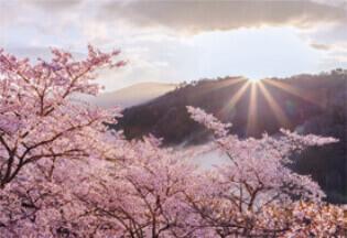 4月 三休公園」(岡山) 輝く太陽 2022年カレンダーの画像