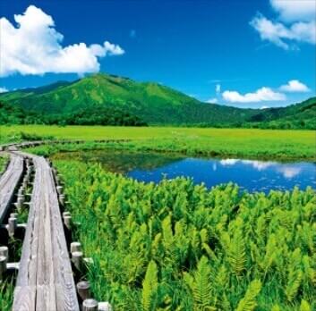7-8月 尾瀬ヶ原-群馬 美しい水辺(フィルムカレンダー) 2022年カレンダーの画像