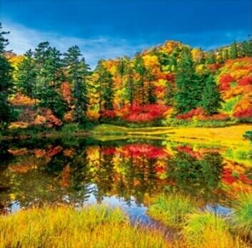 9-10月 滝見沼-北海道 美しい水辺(フィルムカレンダー) 2022年カレンダーの画像