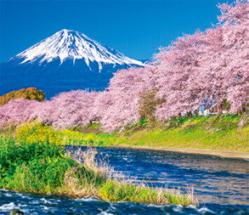 3-4月 潤井川と富士山(静岡) せせらぎの詩(フィルムカレンダー・小) 2022年カレンダーの画像
