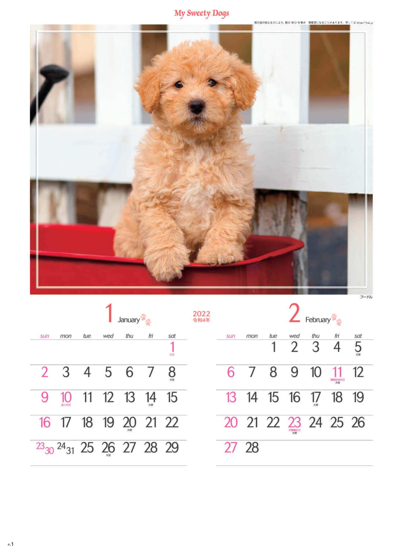 1-2月 プードル マイスウィーティードッグ 2022年カレンダーの画像