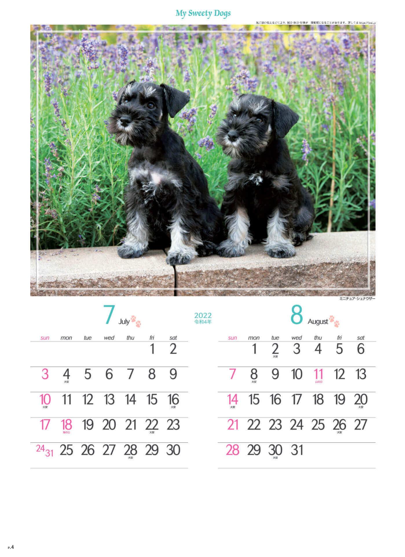 7-8月 ミニチュア・シュナウザー マイスウィーティードッグ 2022年カレンダーの画像