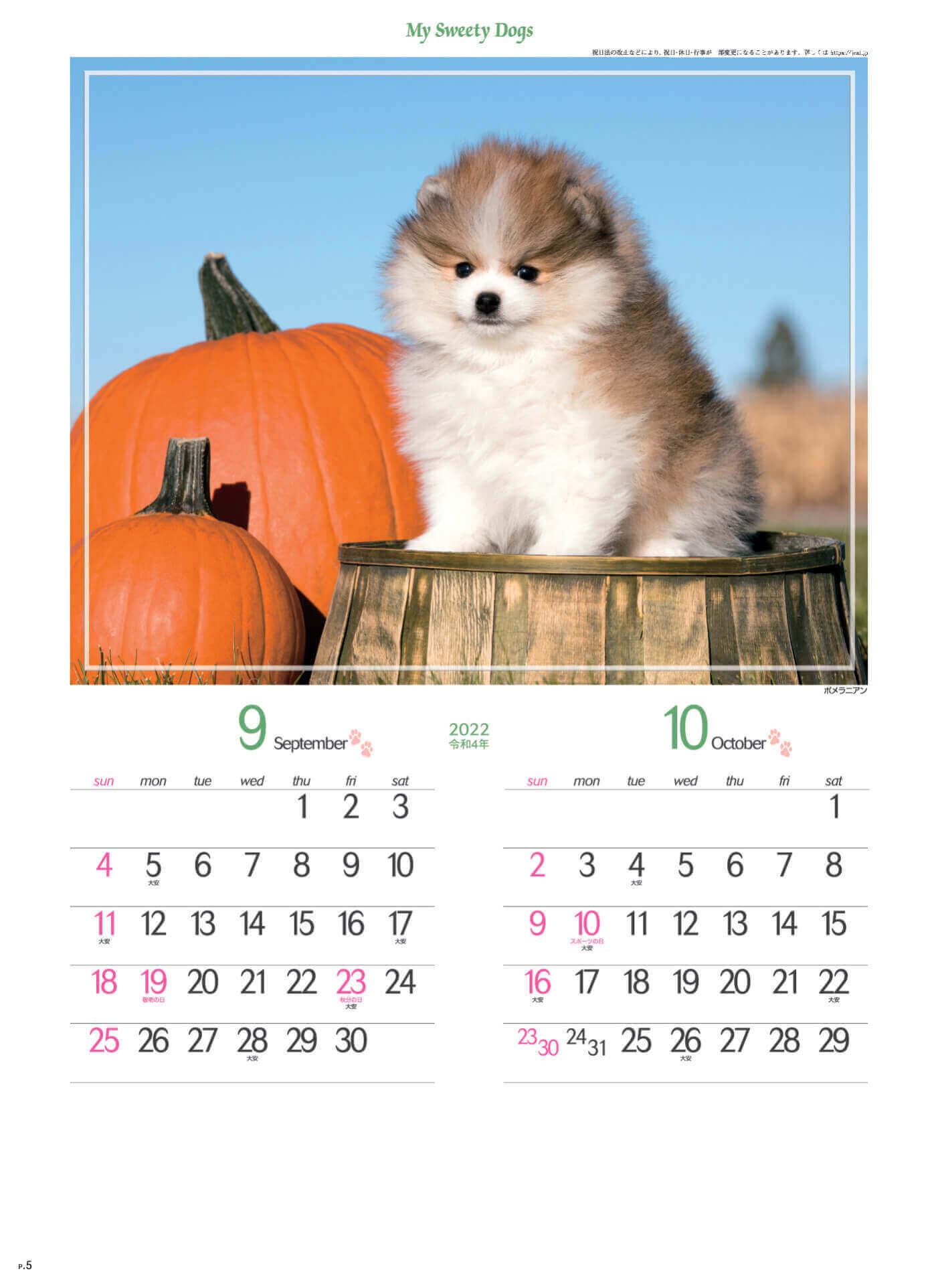9-10月 ポメラニアン マイスウィーティードッグ 2022年カレンダーの画像