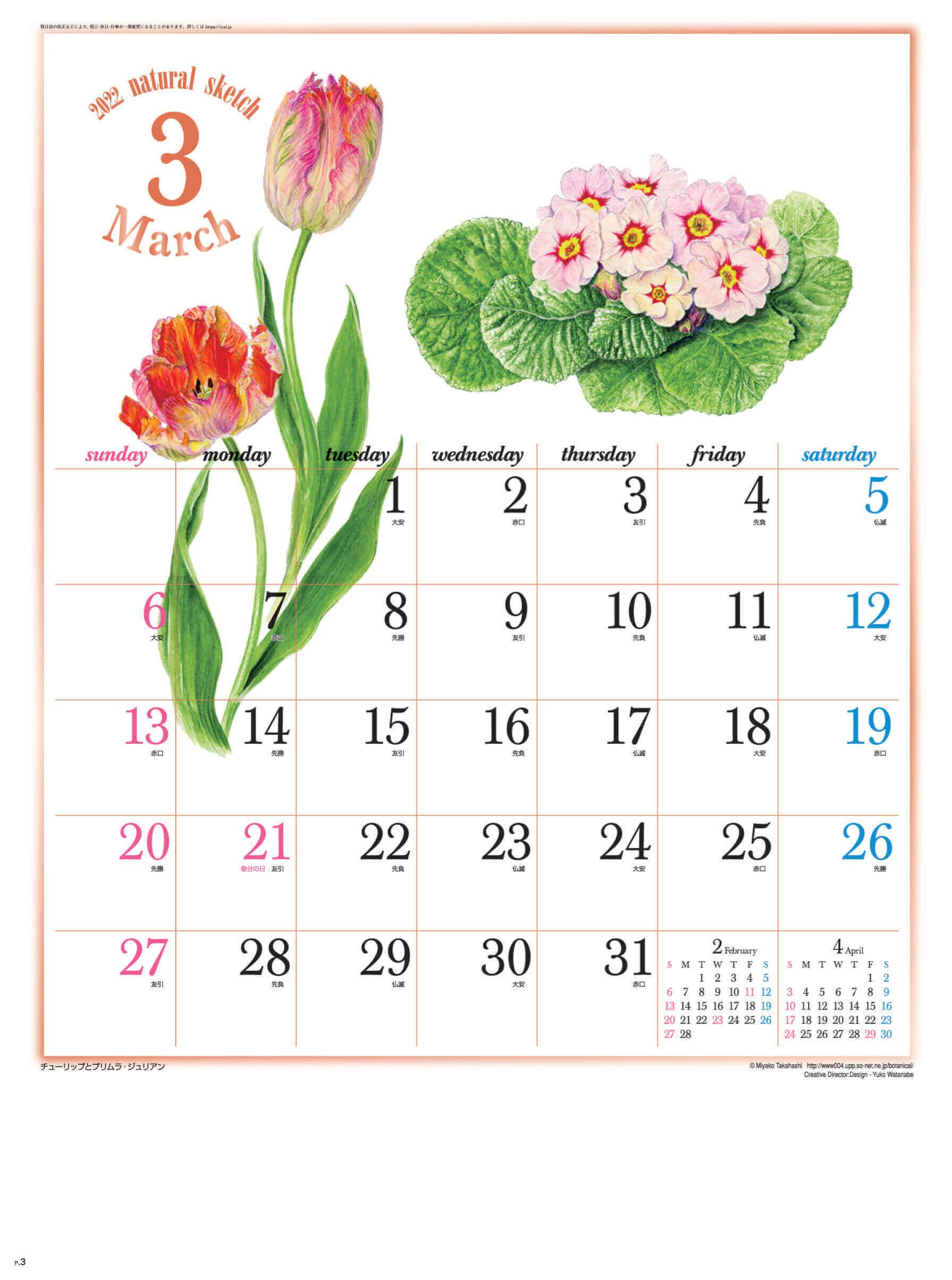 3月 チューリップとプリムラ・ジュリアン ナチュラルスケッチ 2022年カレンダーの画像