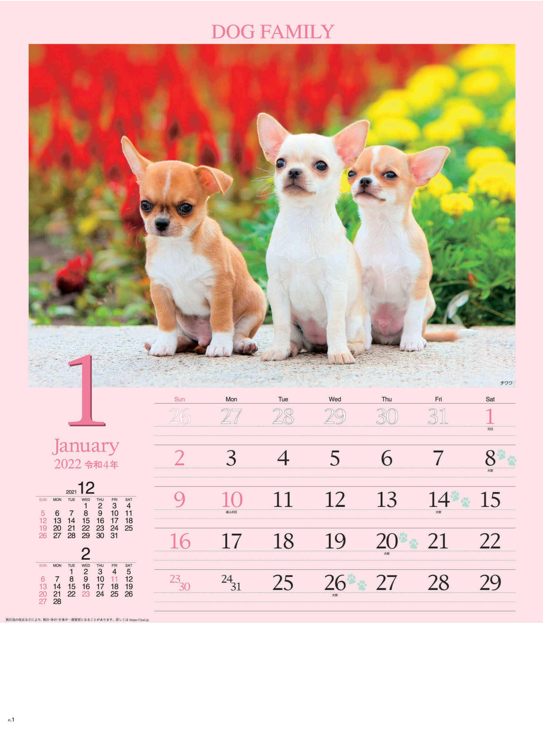 1月 チワワ ドッグファミリー 2022年カレンダーの画像