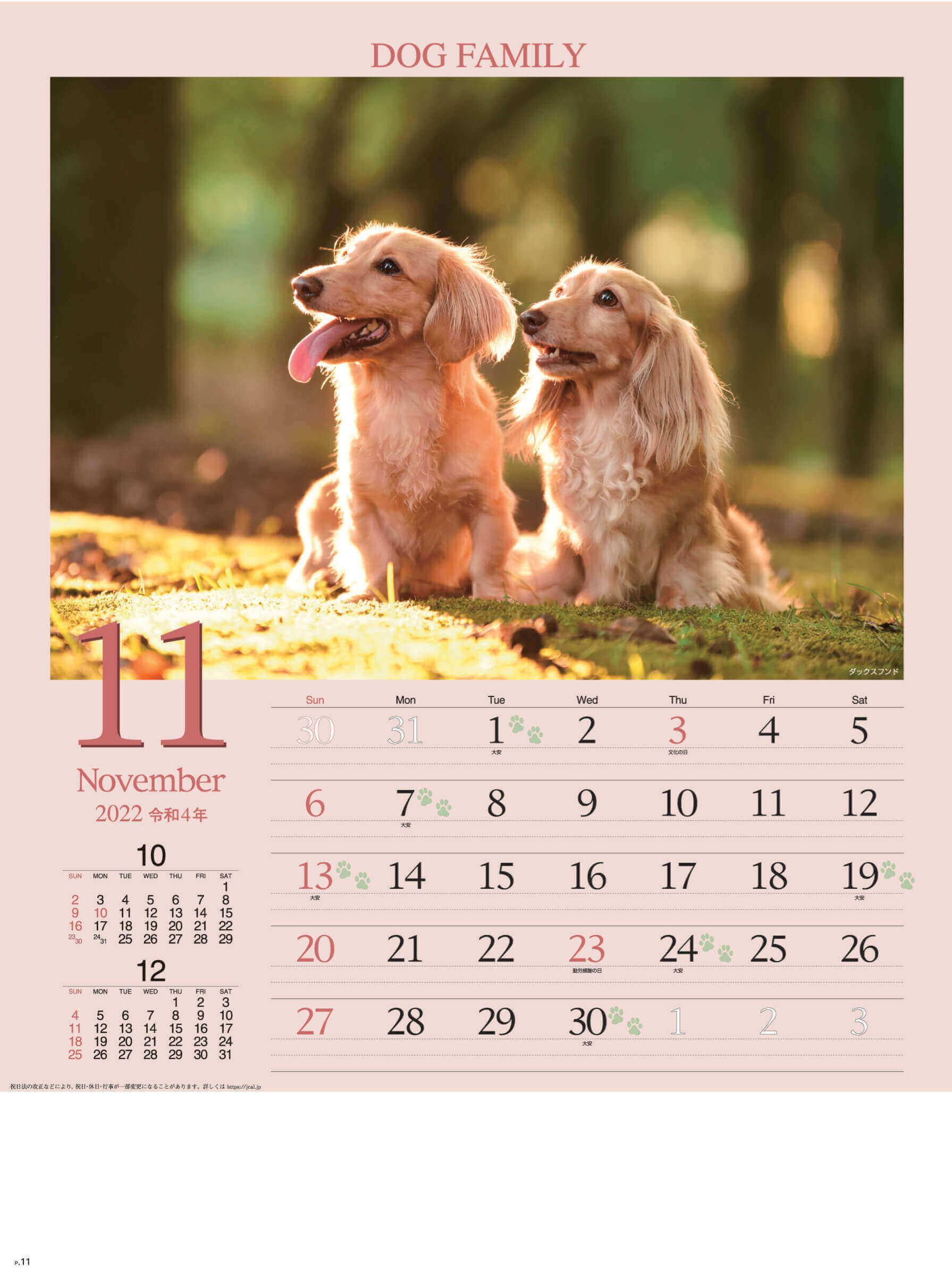 11月 ダックスフンド ドッグファミリー 2022年カレンダーの画像