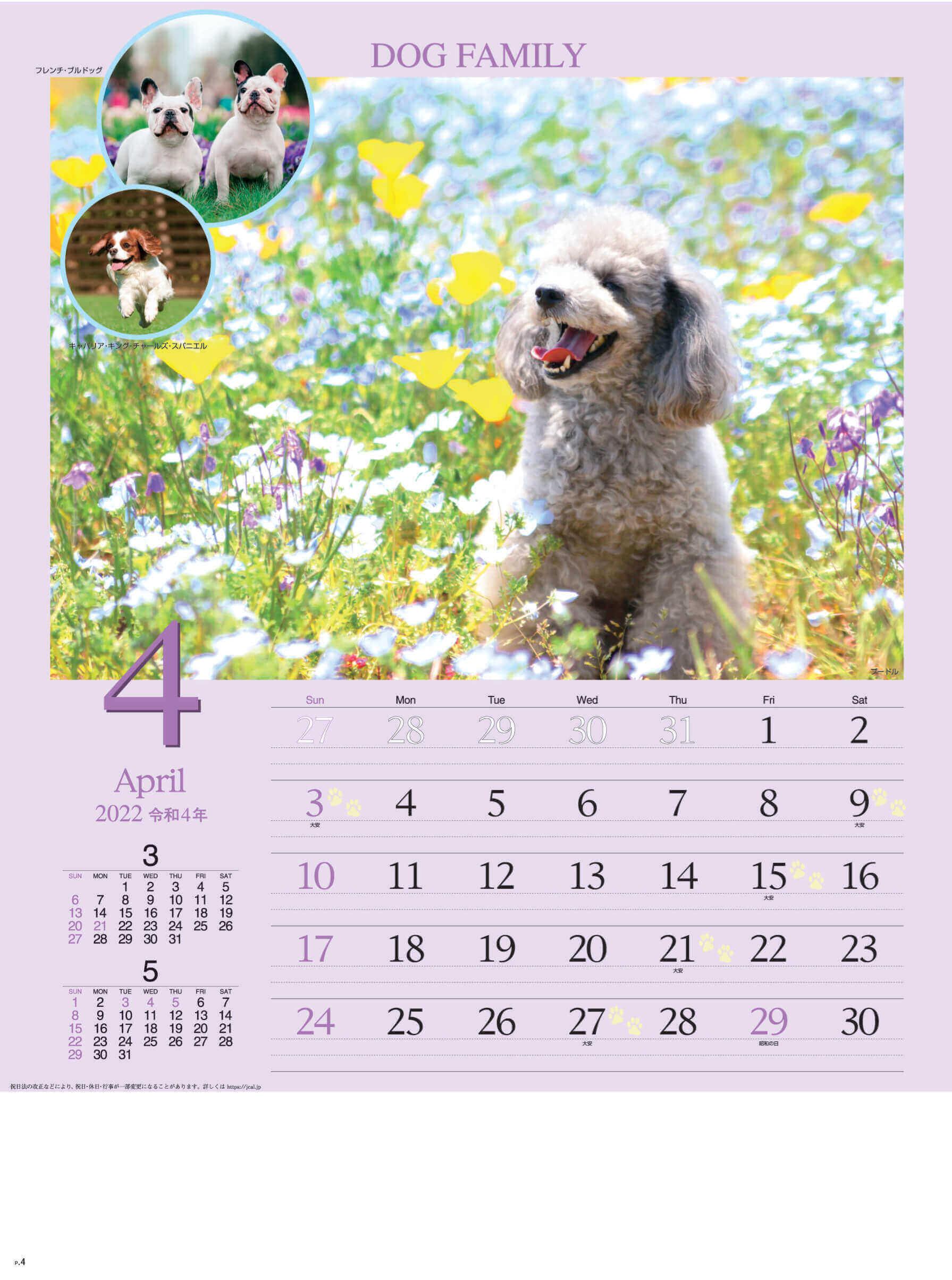 4月 プードル ドッグファミリー 2022年カレンダーの画像