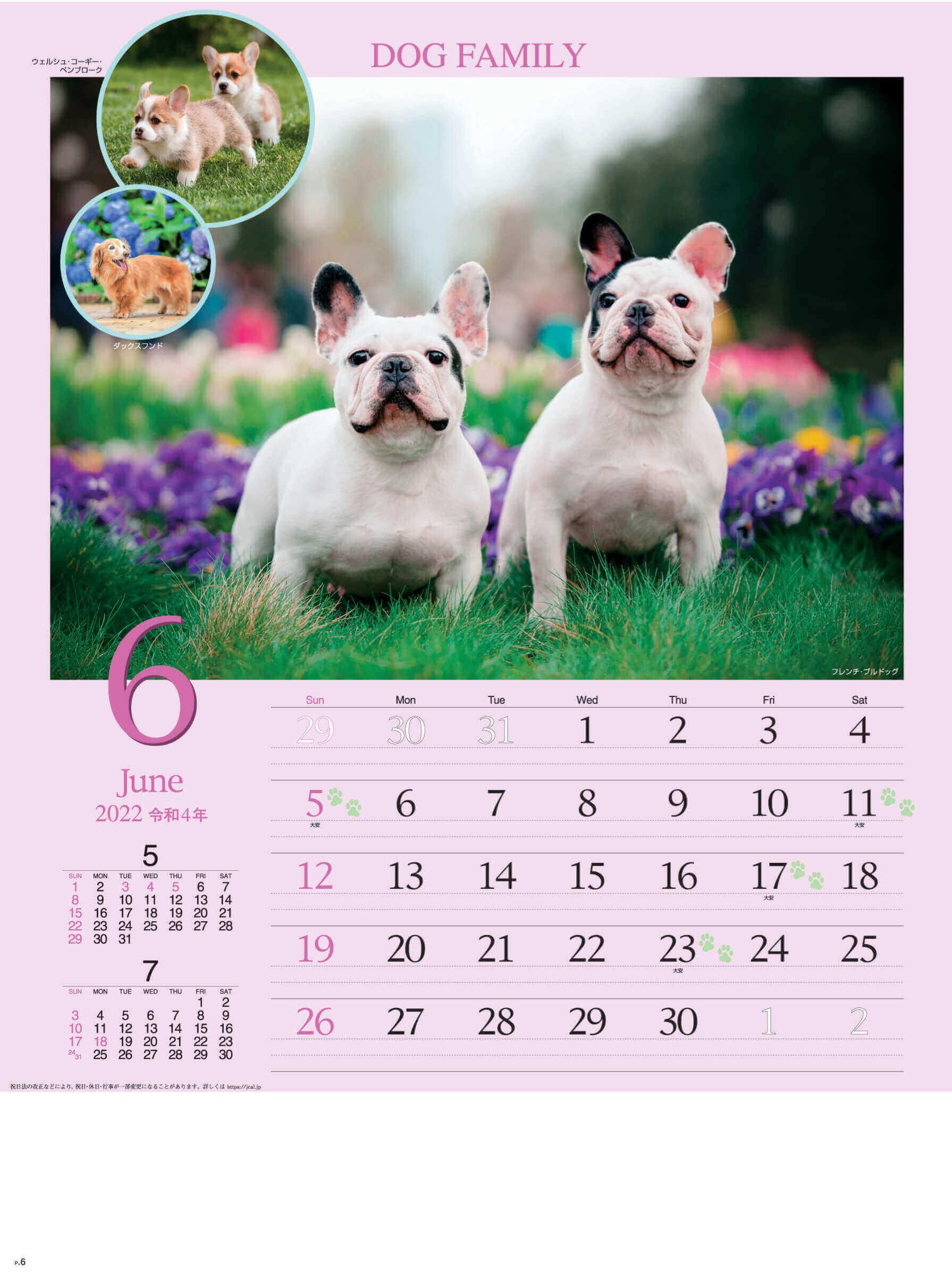 6月 フレンチ・ブルドッグ ドッグファミリー 2022年カレンダーの画像