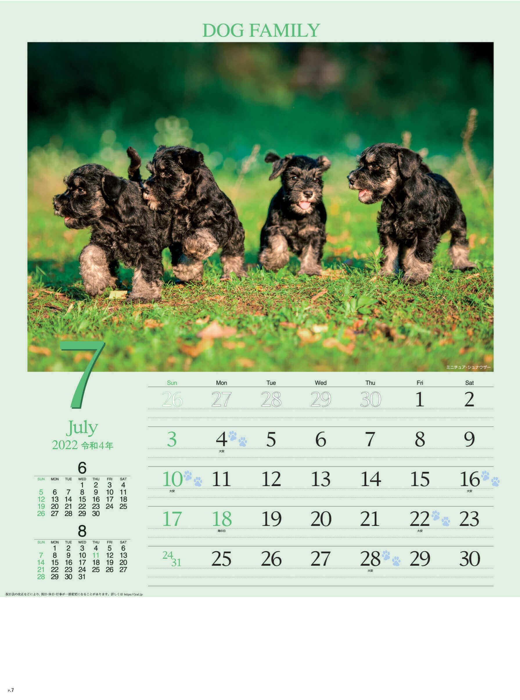 7月 ミニチュア・シュナウザー ドッグファミリー 2022年カレンダーの画像