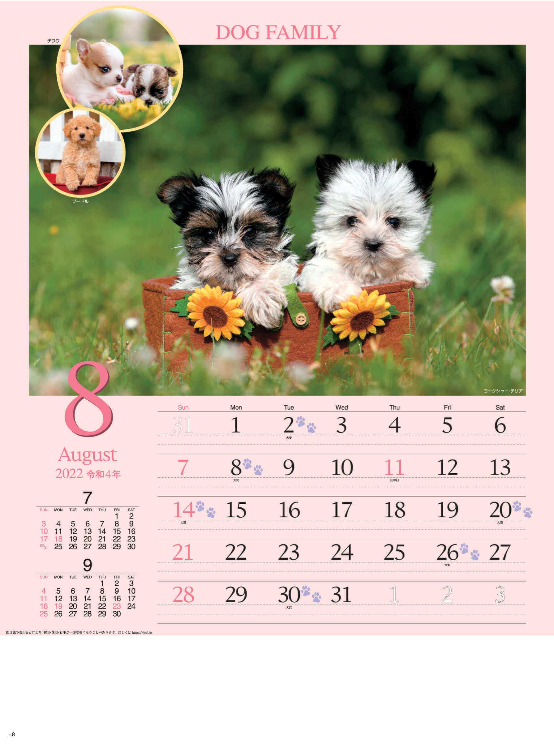 8月 ヨークシャー・テリア ドッグファミリー 2022年カレンダーの画像