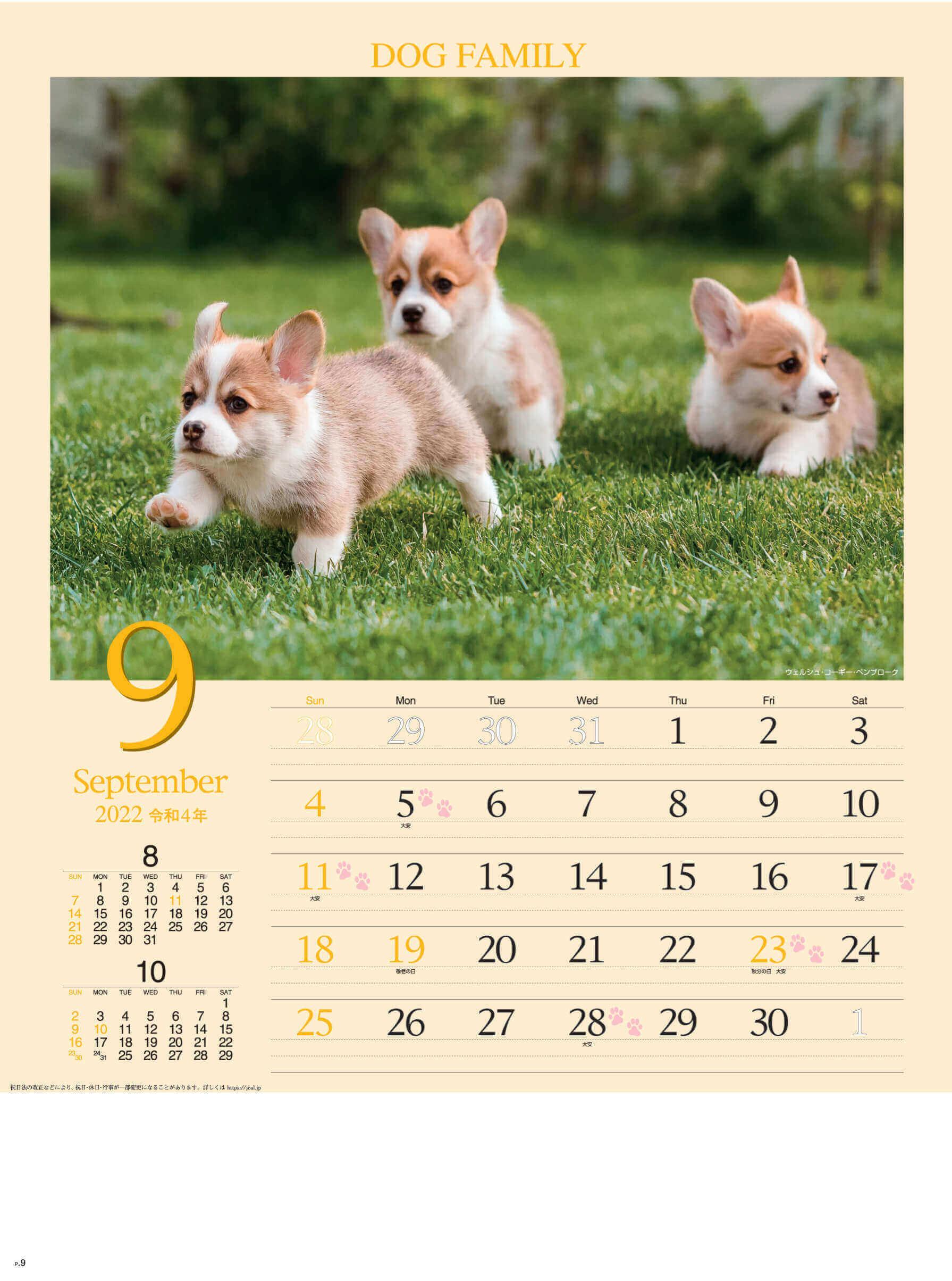 9月 ウェルシュ・コーギー・ペンブローク ドッグファミリー 2022年カレンダーの画像