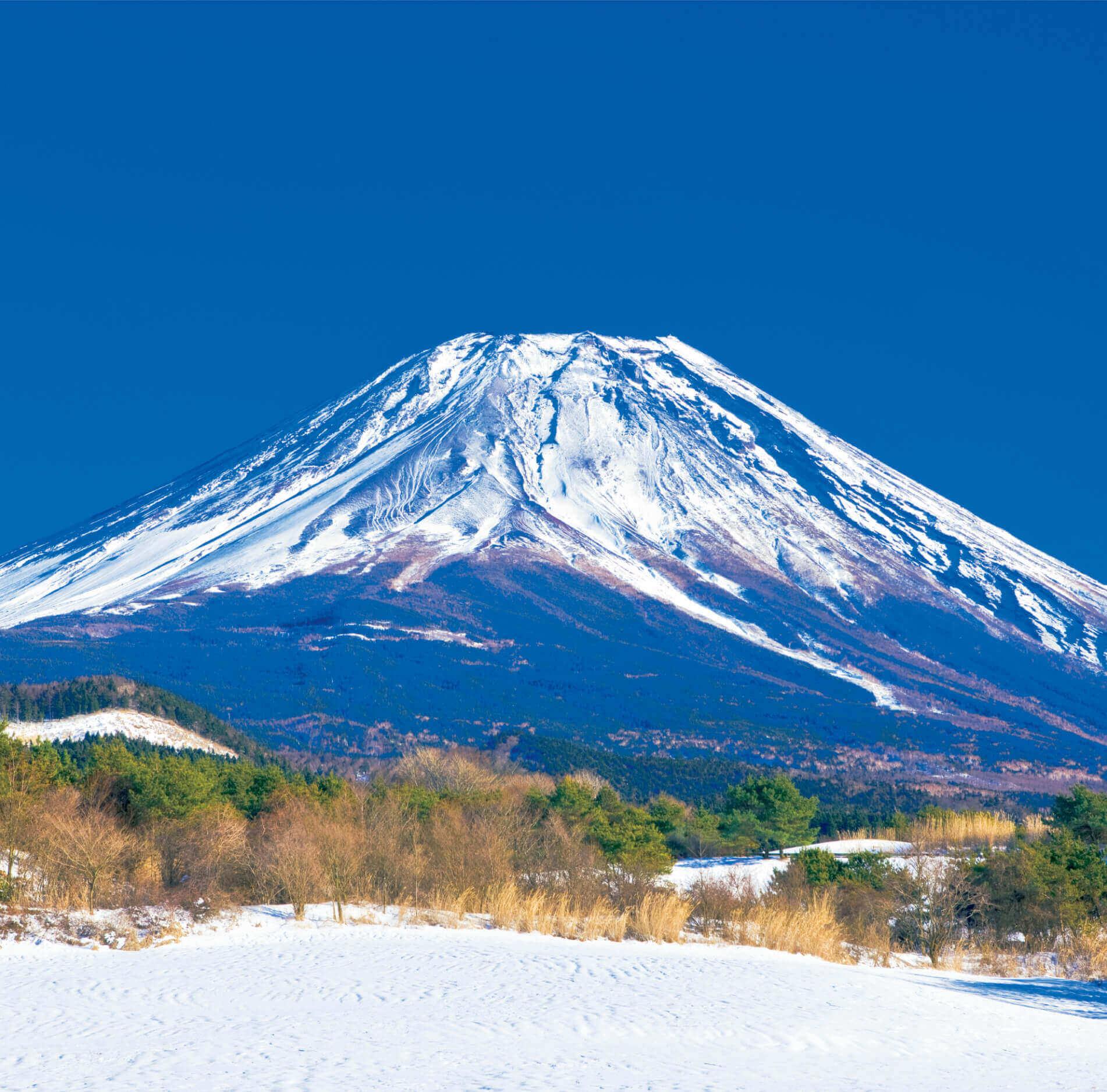 11-12月 富士ヶ嶺より(山梨) 富士山(フィルムカレンダー) 2022年カレンダーの画像