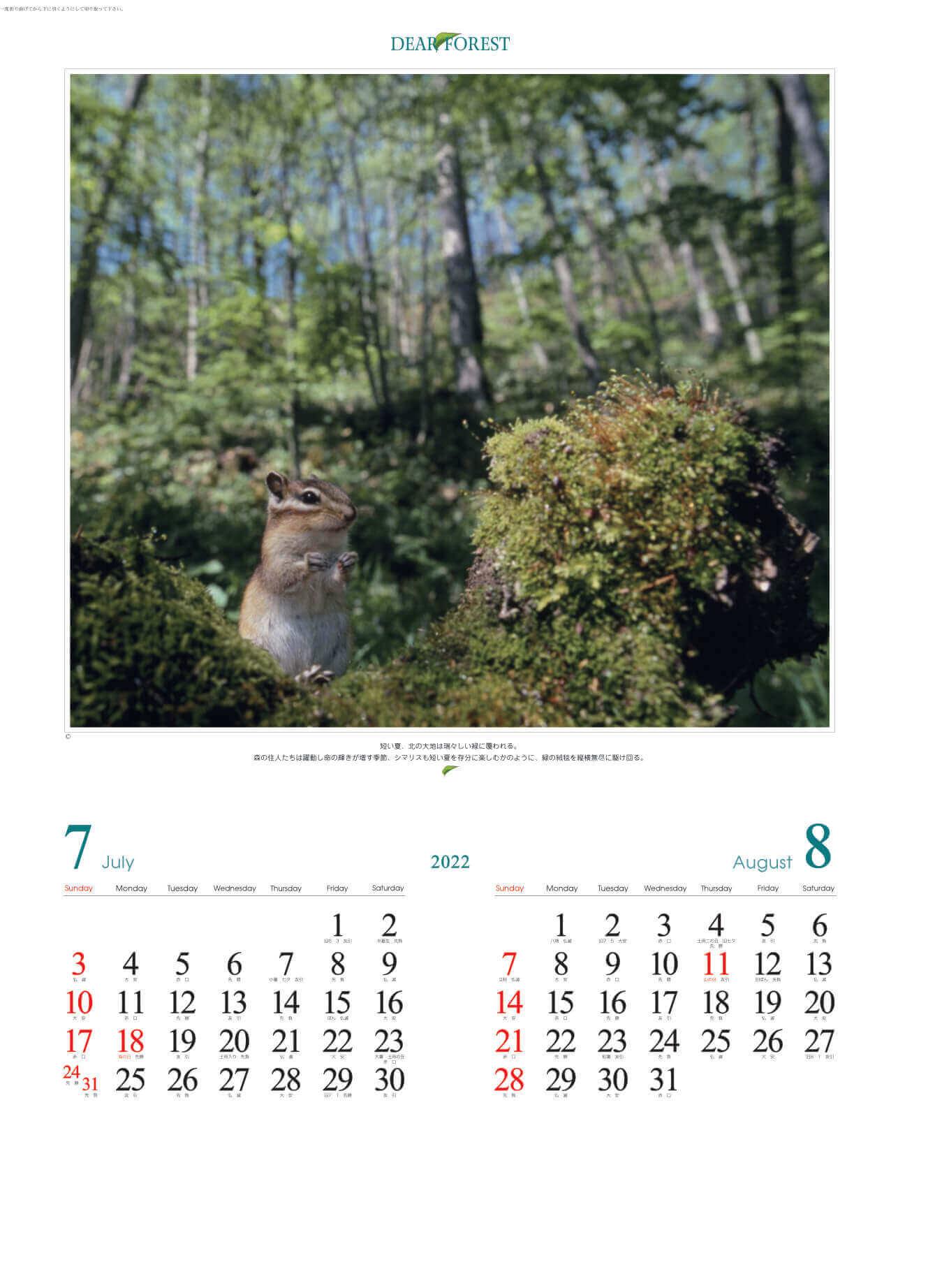 7-8月 シマリス ディアフォレスト 2022年カレンダーの画像