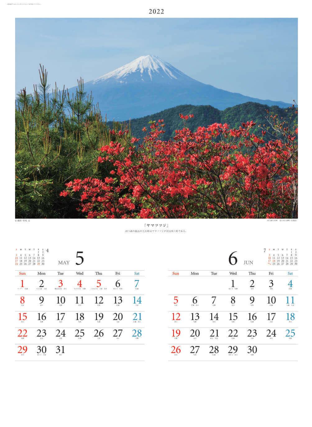 5-6月 河口湖大石峠より(山梨) 富士の四季 2022年カレンダーの画像