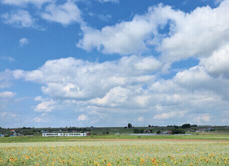 7-8月 富良野線:旭川~富良野(北海道) ローカル線紀行 2022年カレンダーの画像