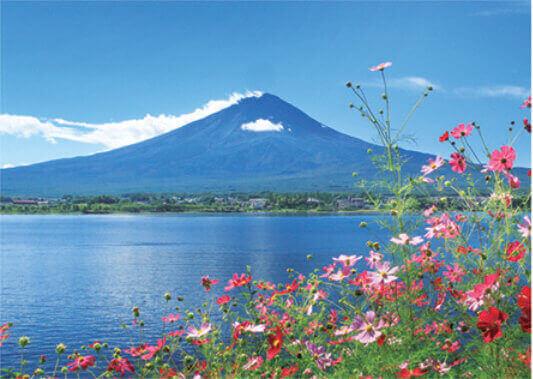 10月 川口湖畔よりコスモスと富士山(山梨) 富士十二景 2022年カレンダーの画像