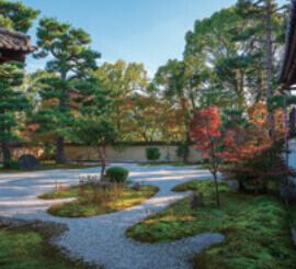 10月 蘆山寺(京都) 庭の詩情 2022年カレンダーの画像